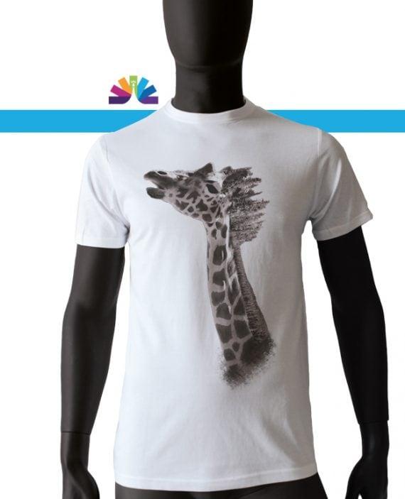 giraffa_foresta_uomo