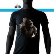 gorilla_montagna_uomo