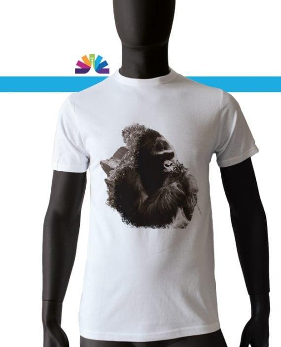 gorilla_montagna_uomo2