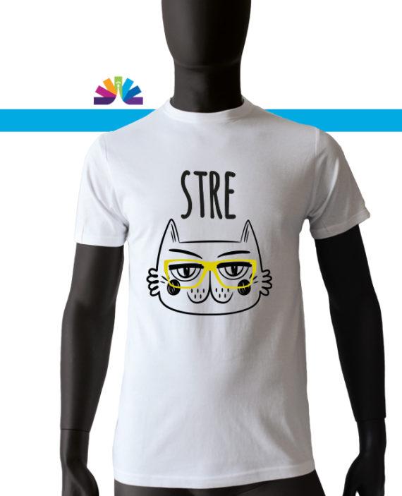 stre_gatto